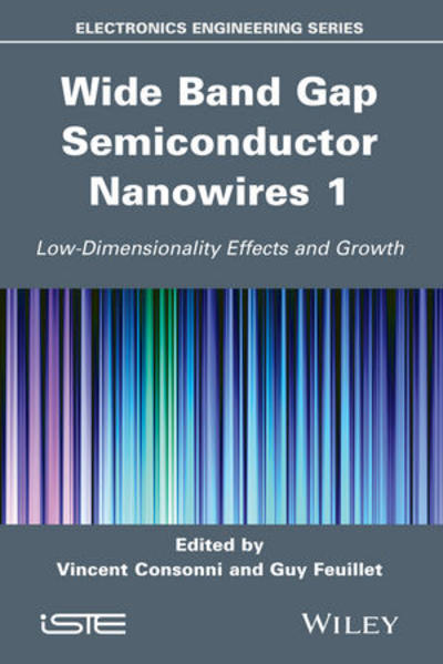 Wide Band Gap Semiconductor Nanowires for Optical Devices - Coverbild