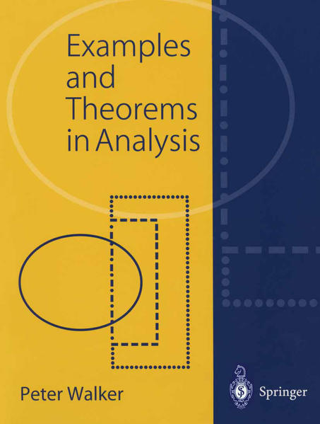 Examples and Theorems in Analysis - Coverbild