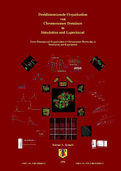 Dreidimensionale Organisation von Chromosomen-Domänen in Simulation und Experiment - Coverbild