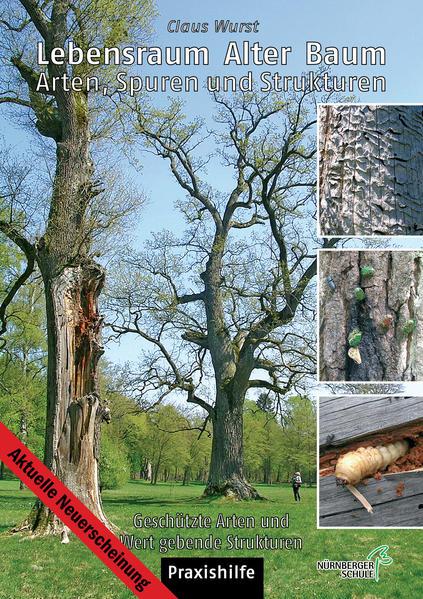 Lebensraum alter Baum - Coverbild