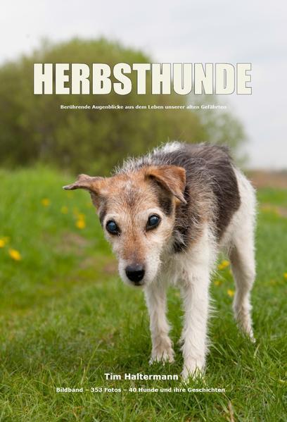 HERBSTHUNDE - Coverbild