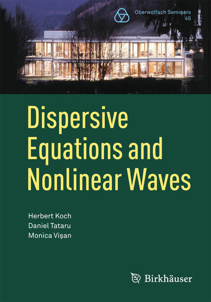Dispersive Equations and Nonlinear Waves - Coverbild