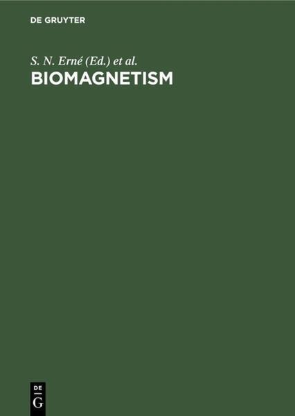 BIOMAGNETISM  3.INT.WORKSHOP(ERNE/HAHLBOHM/L) - Coverbild