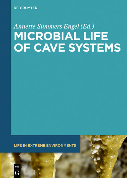 Microbial Life of Cave Systems - Coverbild