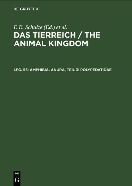 Amphibia - Coverbild