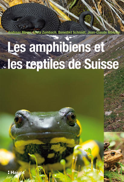 Les amphibiens et les reptiles de Suisse - Coverbild