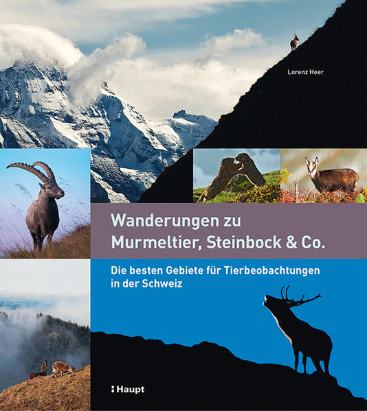 Wanderungen zu Murmeltier, Steinbock & Co. - Coverbild