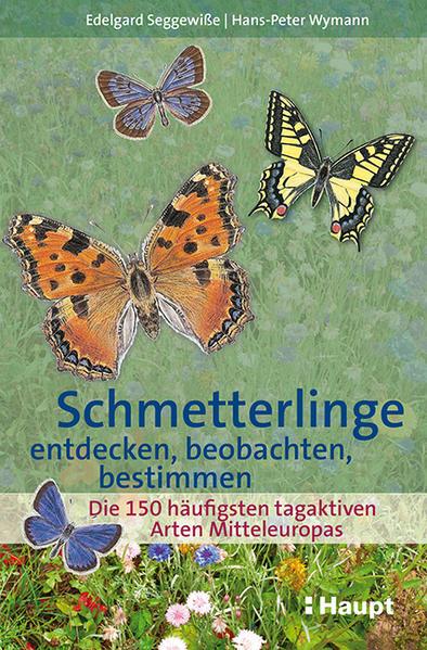 Schmetterlinge entdecken, beobachten, bestimmen - Coverbild