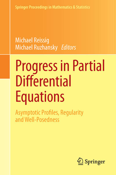 Progress in Partial Differential Equations - Coverbild