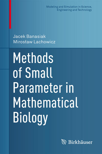 Methods of Small Parameter in Mathematical Biology - Coverbild