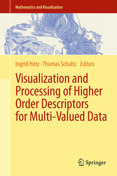 Visualization and Processing of Higher Order Descriptors for Multi-Valued Data - Coverbild