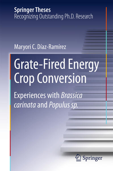 Grate-Fired Energy Crop Conversion - Coverbild
