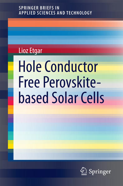 Hole Conductor Free Perovskite-based Solar Cells - Coverbild