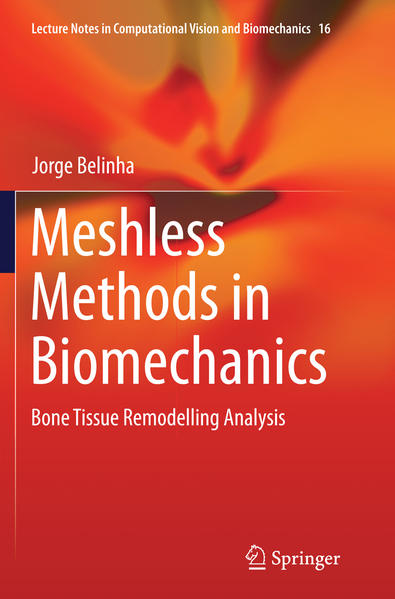 Meshless Methods in Biomechanics - Coverbild