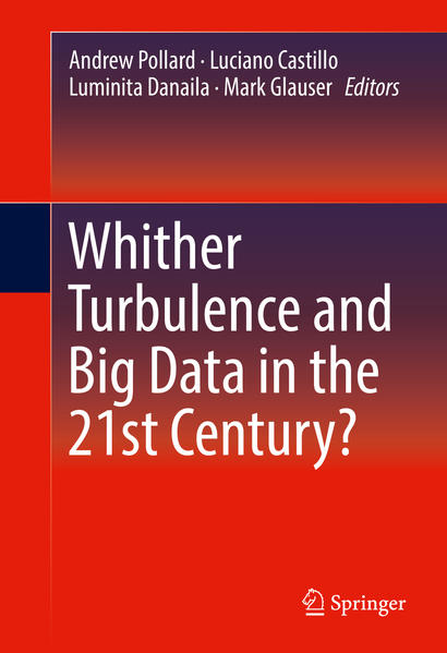 Whither Turbulence and Big Data in the 21st Century? - Coverbild