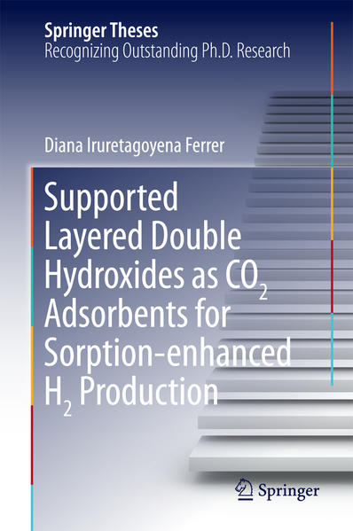 Supported Layered Double Hydroxides as CO2 Adsorbents for Sorption-enhanced H2 Production - Coverbild