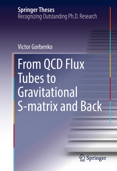 From QCD Flux Tubes to Gravitational S-matrix and Back - Coverbild
