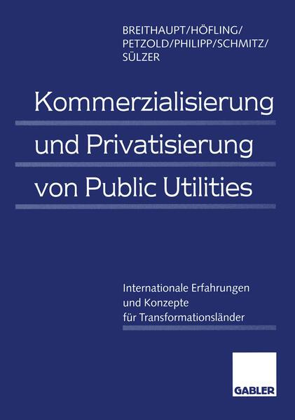 Kommerzialisierung und Privatisierung von Public Utilities - Coverbild