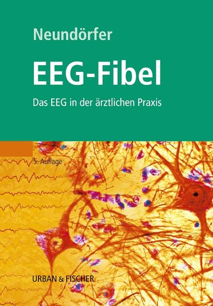 EEG-Fibel - Coverbild