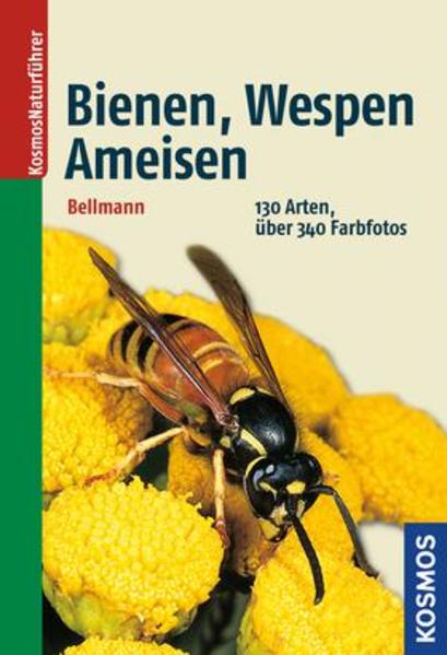Bienen, Wespen, Ameisen Epub Herunterladen