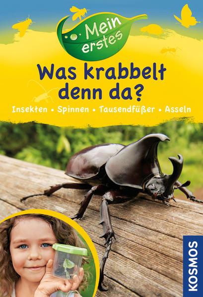 Download PDF Kostenlos Mein erstes Was krabbelt denn da?