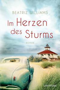 Im Herzen des Sturms Cover
