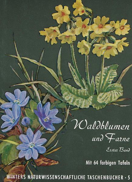 Unsere Waldblumen und Farngewächse - Coverbild