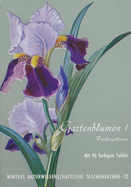 Gartenblumen / Frühlingsblumen - Coverbild
