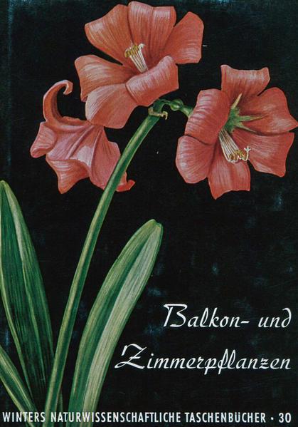 Balkon- und Zimmerpflanzen - Coverbild