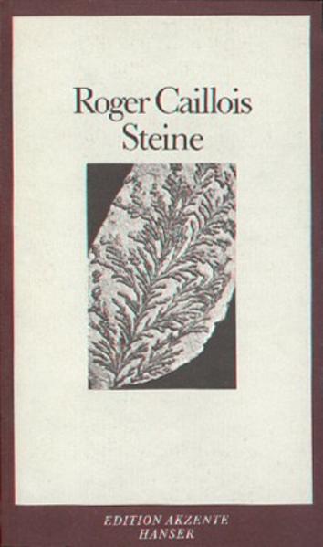 Steine - Coverbild
