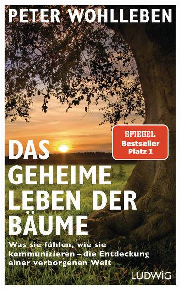 Das geheime Leben der Bäume - Coverbild