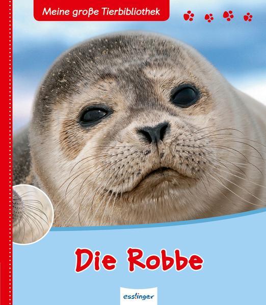 Meine große Tierbibliothek: Meine große Tierbibliothek – Die Robbe - Coverbild