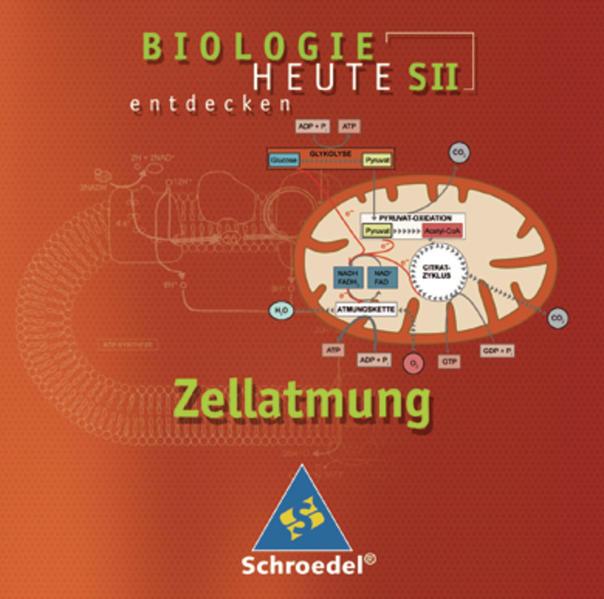 Biologie heute entdecken SII / Zellatmung - Coverbild