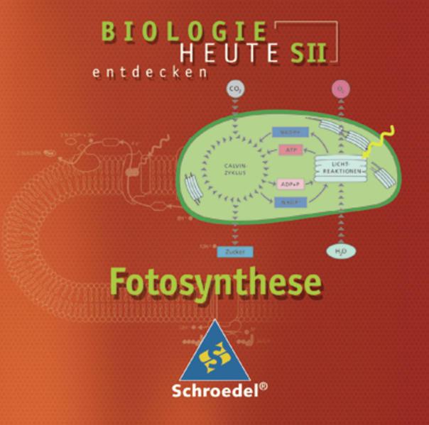 Biologie heute entdecken SII / Fotosynthese - Coverbild
