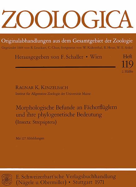 Morphologische Befunde an Fächerflüglern und ihre phylogenetische... - Coverbild