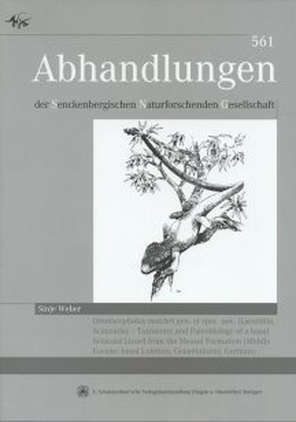 Ornatocephalus metzleri gen. et spec. nov. (Lacertilia, Scinoida) - Coverbild
