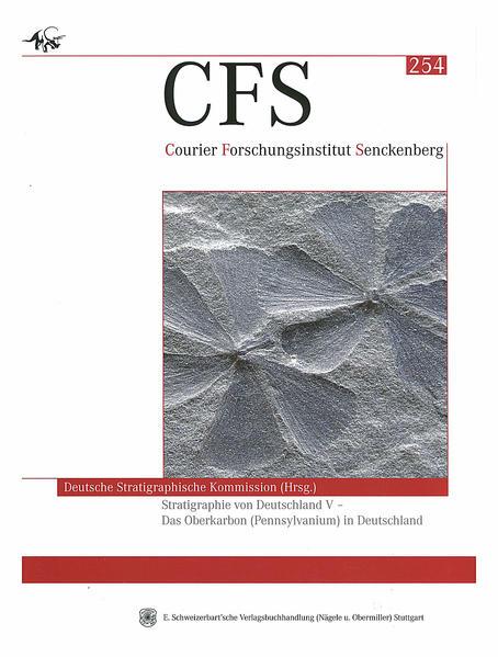 Stratigraphie von Deutschland V - Coverbild