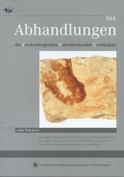 Taxonomy and paleoecology of lyssacinosan Hexactinellida from the Upper Cretaceous (Coniacean) of Bornholm, Denmark, in comparison with other Postpaleozoic representatives - Coverbild