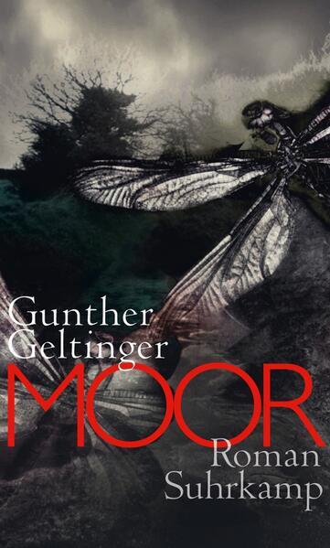Moor - Coverbild