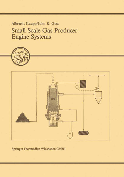 Small Scale Gas Producer-Engine Systems - Coverbild