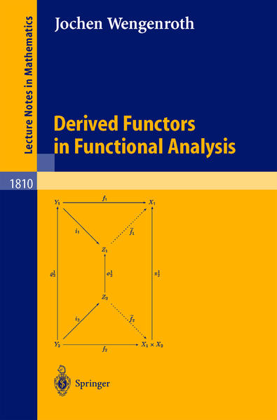 Derived Functors in Functional Analysis - Coverbild