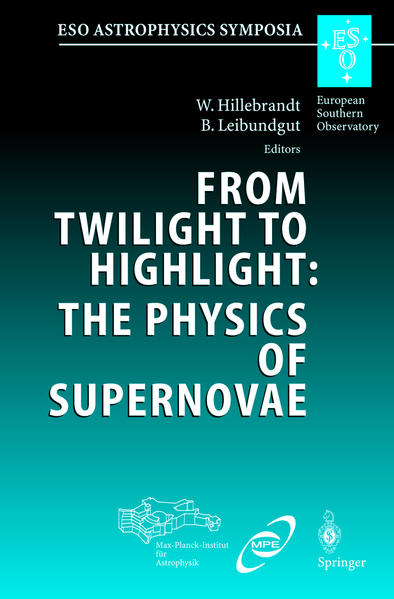 From Twilight to Highlight: The Physics of Supernovae - Coverbild