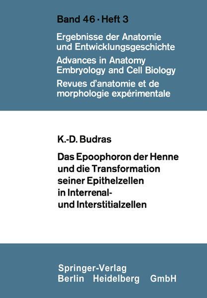 Das Epoophoron der Henne und die Transformation seiner Epithelzellen in Interrenal- und Interstitialzellen - Coverbild