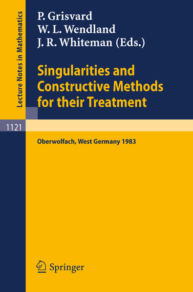 Singularities and Constructive Methods for Their Treatment - Coverbild