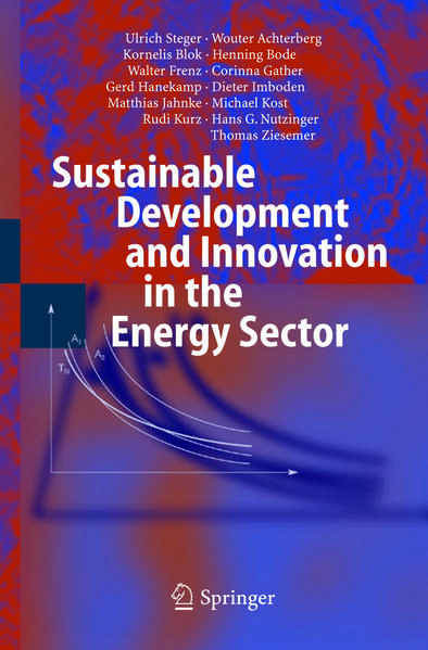 Sustainable Development and Innovation in the Energy Sector - Coverbild