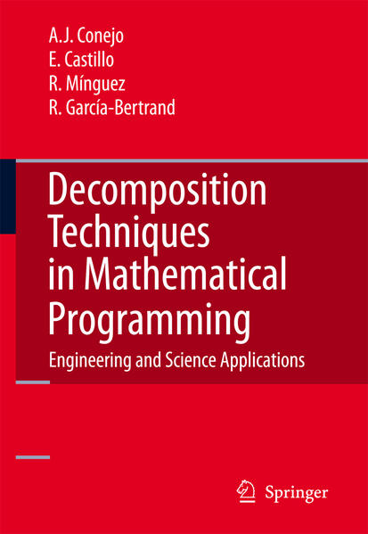 Decomposition Techniques in Mathematical Programming - Coverbild