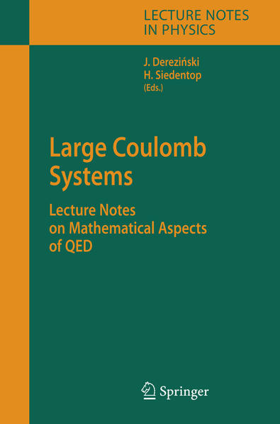Large Coulomb Systems - Coverbild