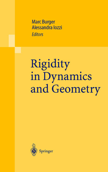 Rigidity in Dynamics and Geometry - Coverbild