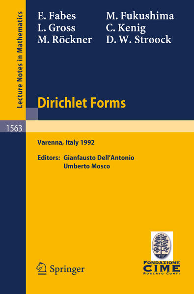 Dirichlet Forms - Coverbild