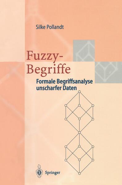 Fuzzy-Begriffe - Coverbild